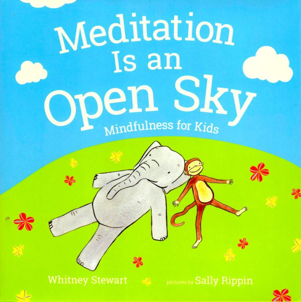 Book cover for Meditation Is an Open Sky