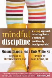 Book cover for Mindful Discipline